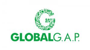 CHỨNG NHẬN GLOBAL G.A.P LÀ GÌ?